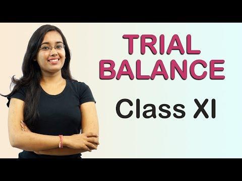 Suspense Account - Trial Balance (Accounts Class 11th)