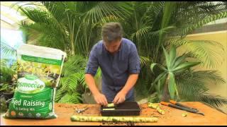 The Garden Gurus - Propagating Plants