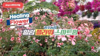 광주 이색카페 광주농협 힐링플라워 스마트팜