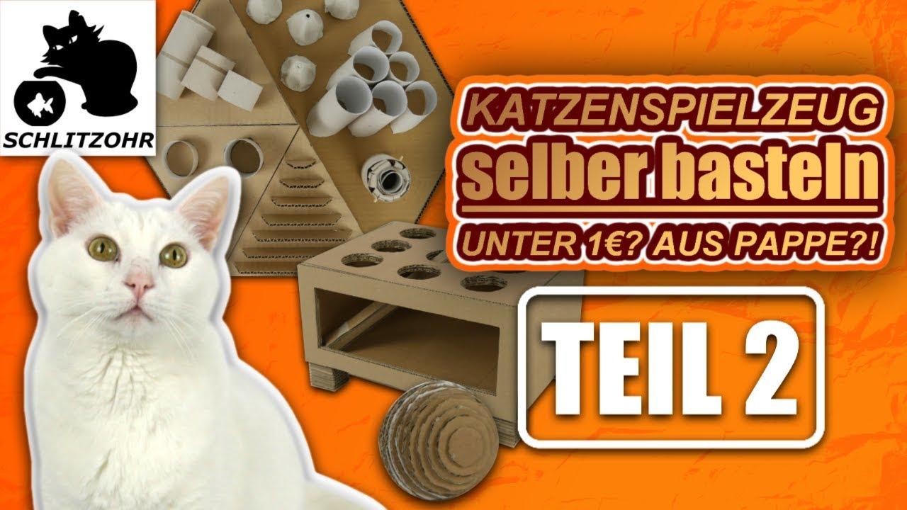 Katzenspielzeug Selber Basteln Unter 1 Teil 2 2 Diy Katzenspielzeug Hacks Fummelbrett