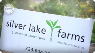 Silver Lake Farms | Artisan Ep. 2 | COIN