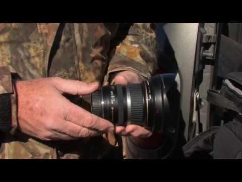Lynn Chamberlain's Camera Outdoors - Mule Deer on the Paunsaugunt