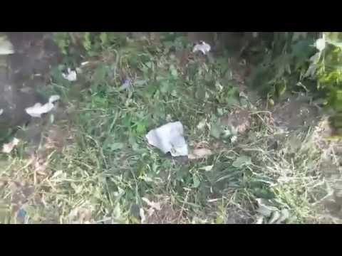 Ополченцы жестко зачистили населенный пункт под Лисичанском от украинских карателей видео, 18+, фото