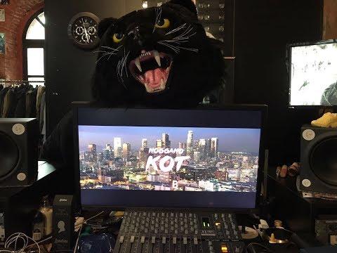 Скачать клип Ноггано - Кот, который тебя унизит смотреть онлайн