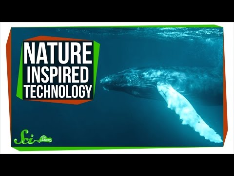 8 Useful Technologies Inspired By Nature