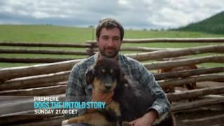 Новая передача про собак на канале Discovery Channel