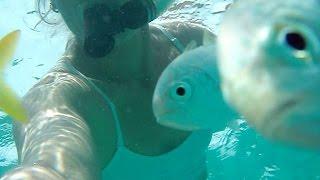 Nipple-biting fish at BocaGrande & sailing to Marquesas, Florida Keys.