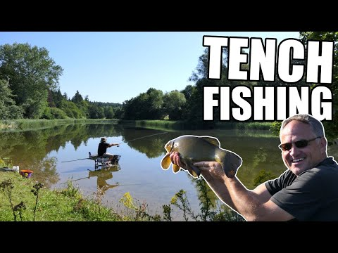 Waggler Fishing For Tench On An Old Estate Tench Lake