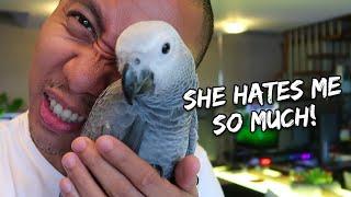 My Pet Bird Is Biting Me - correcting a biting parrot   Vlog #258 thumbnail