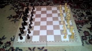 Как играть в шахмат