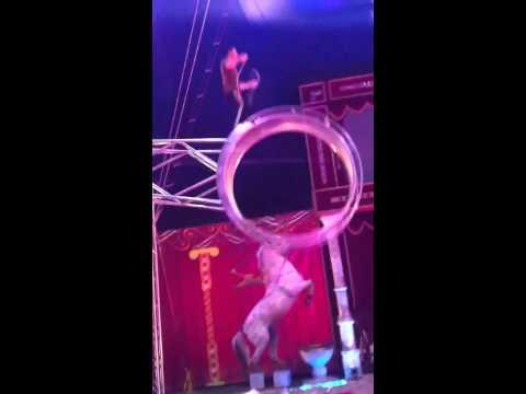Joseph Ashton from Joseph Ashton's Circus