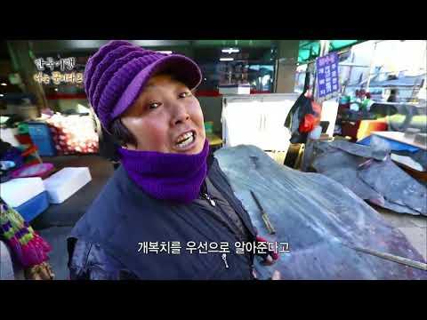 한국기행 - Korea travel_나는 꾼이다2 1부 어시장의 고수들_#001