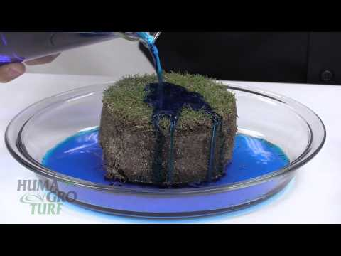 Soil Surfactant Surf-Max™ Demonstration A-1: Thatch Infiltration Bench Test