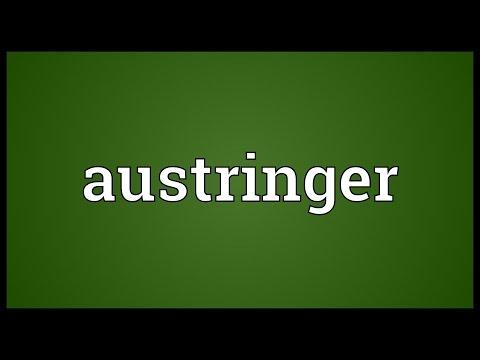 Header of austringer