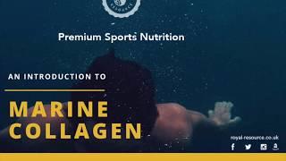 Marine Collagen by Wellness Lab ltd