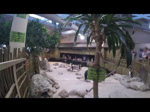 Two Oceans Aquarium 4