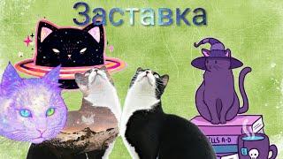 Заставка канала с котами #коты #танцуют #приколы #заставка #канала