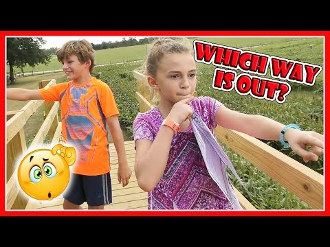 WE GOT LOST IN A CORN MAZE! | WHAT HAPPENS TO MOM? | We Are The Davises