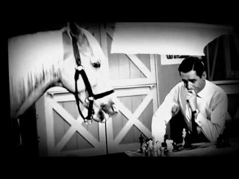 Mister Ed the talking horse and Wilbur Post playing chess