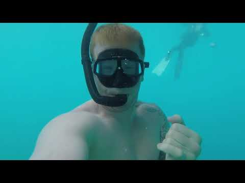Freediving at Vortex Springs 2017