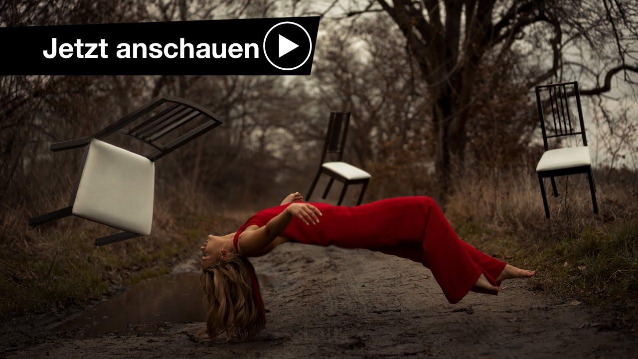 Schwebende möwe   Download der kostenlosen Fotos