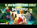 Angry Birds Rio - Blossom River Gameplay