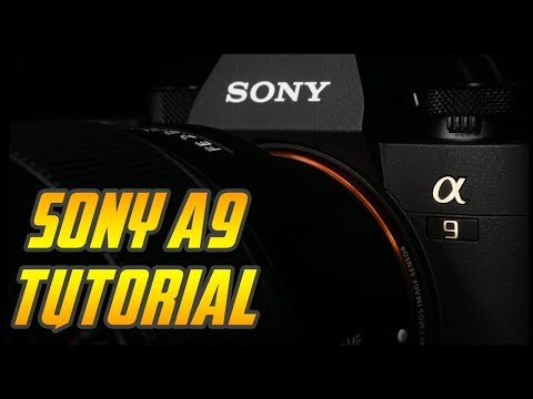 Sony A9 Overview Tutorial - Full Camera Training Video