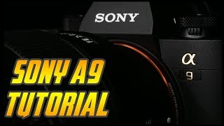 Sony A9 Crash Course now available for download Here: http://canont...