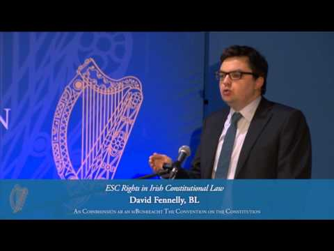 ESC Rights in Irish Constitutional: David Fennelly BL