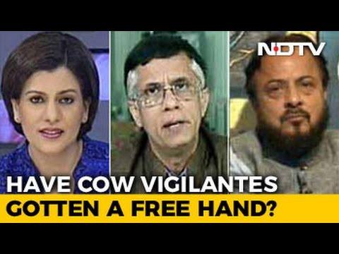 Have Cow Vigilantes Got A Free Hand?