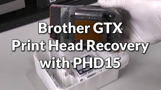 Brother GTX Print Head Recovery with PHD15