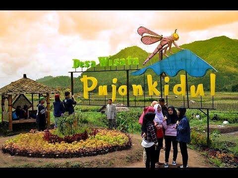 Batu Dingin Malang Memories Review Cafe Sawah Youtube