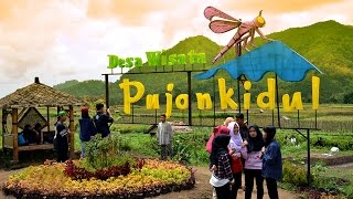 Desa Wisata Pujon Kidul Batu Malang