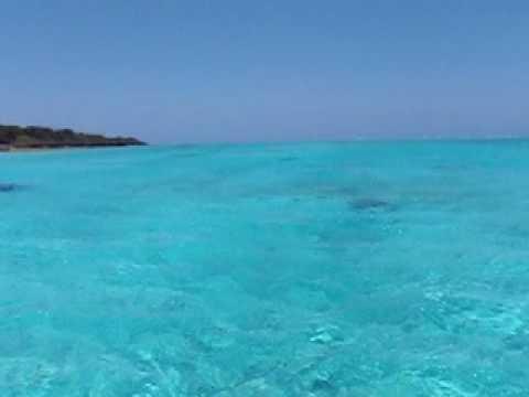与論島の青い海を滑るように移動