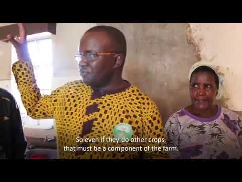 Improving Income and Livelihoods of Rural Communities in East Africa with Organic Agriculture