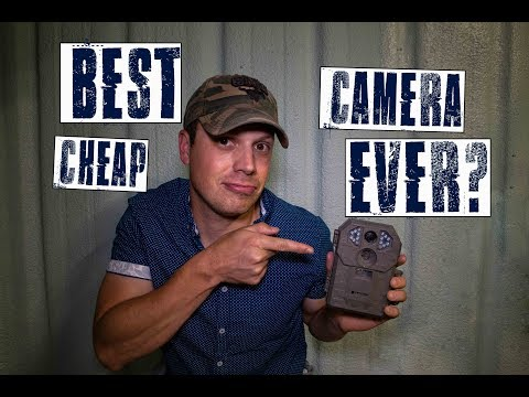 BEST Cheap Trail Camera EVER? | Stealth Cam P12 Review | Hunting Gear Reviews