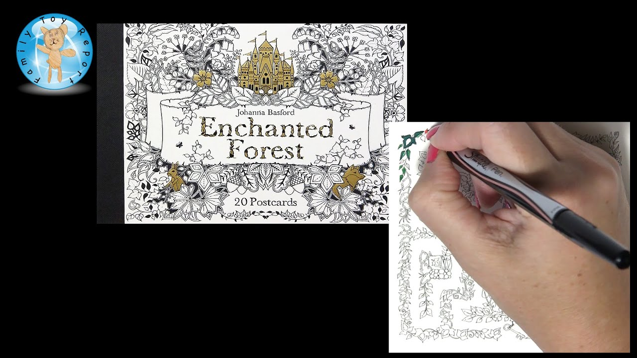 Enchanted Forest Johanna Basford Adult Coloring Book Postcards Maze Sharpie Pens