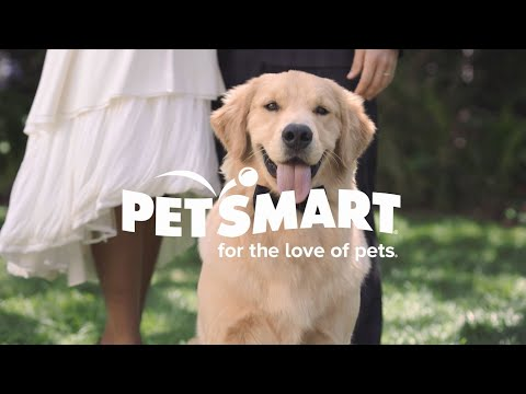 PetSmart By Your Side: Grooming, Doggie Day Camp & More!   PetSmart
