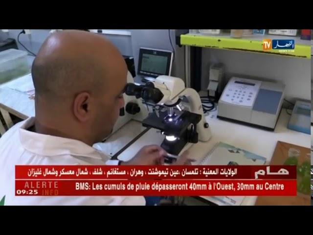 سيدي بلعباس   مشاتل خاصة    نماذج إستثمارية ناجحة لمرافقة الفلاحين   YouTube