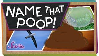 Name That Poop!