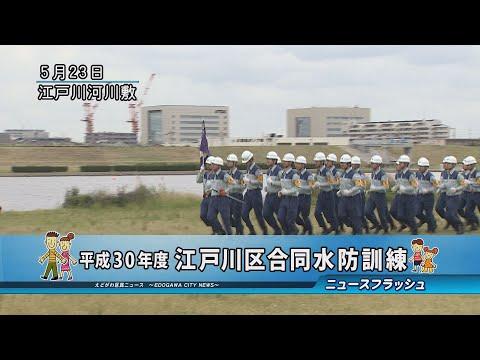 平成30年度 江戸川区合同水防訓練