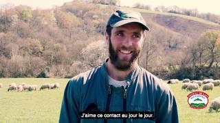 LUR BERRI -  Filière ovine : Agneau de lait des Pyrénées