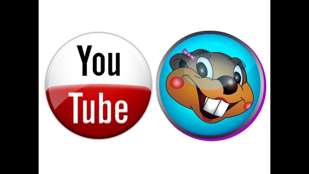 Beaver in Spanish | English to Spanish Translation ...