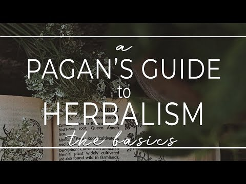 A Pagan's Guide to Herbalism II What is Herbalism? A Brief History & it's Connection to Paganism