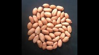 Best Groundnut