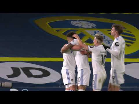 Leeds Newcastle Goals And Highlights