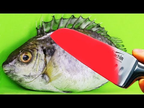 EXPERIMENT Glowing 1000 Degree KNIFE VS PIRANHA FISH