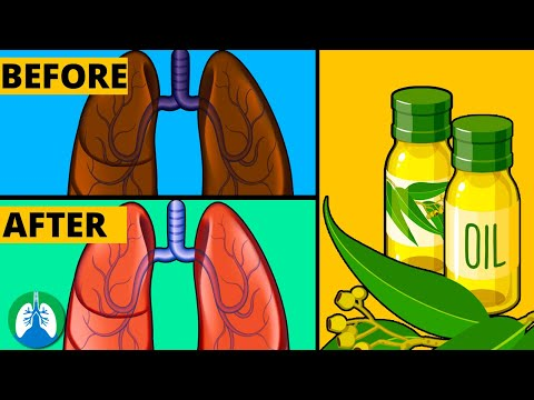 How to Cleanse Your Lungs with Eucalyptus Oil | Respiratory Therapy Zone