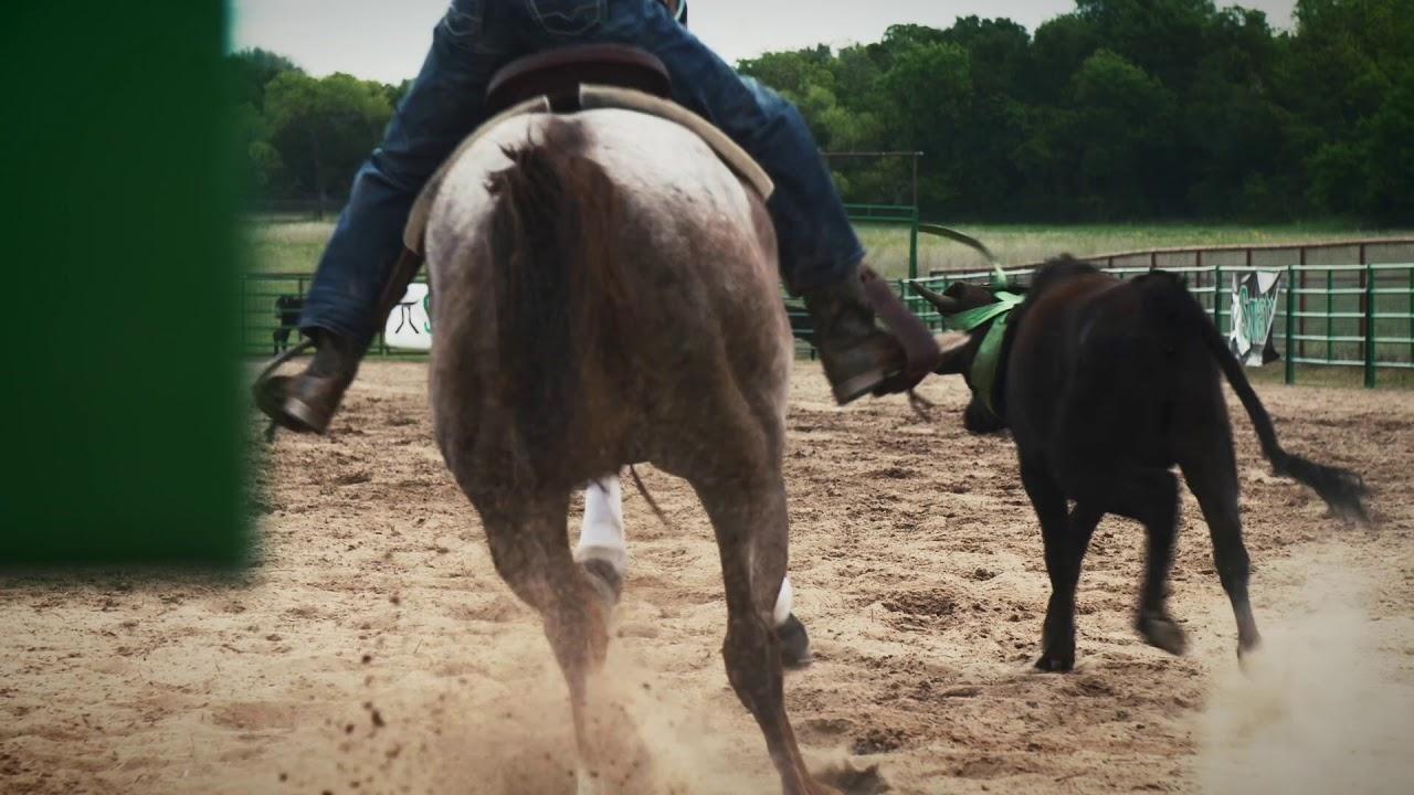 Smarty Roping | Heeling