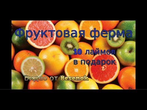 Играть фруктовая ферма с выводом денег